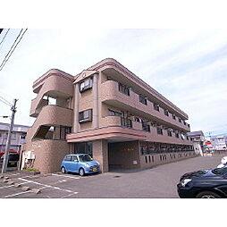 福岡県久留米市東合川6丁目の賃貸マンションの外観