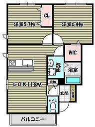 シャーメゾン金剛パーク[1階]の間取り