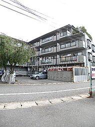 パレ・デュ・カメリア[305号室号室]の外観