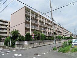 南浦和ニューライフマンション 学区/辻南小・南浦和中