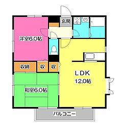 埼玉県所沢市中新井5丁目の賃貸アパートの間取り