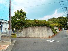 現地写真:西側から撮影