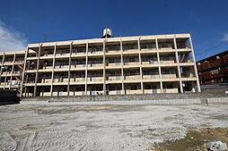 パインリーフ松原[1階]の外観