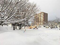 屯田ひばり公園...