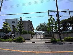 中学校浦安市立...