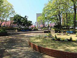 狭山台中央公園...