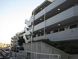 神奈川県川崎市高津区蟹ケ谷の賃貸マンションの外観