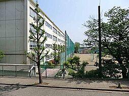 薬師中学校