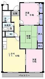 大阪府和泉市万町の賃貸マンションの間取り