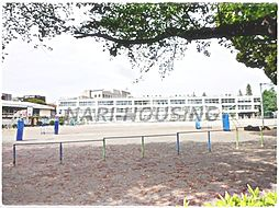 中学校昭島市立...