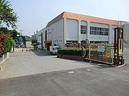 高木幼稚園