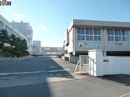 富木島中学校 ...