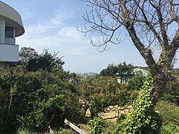 江の島・富士山...