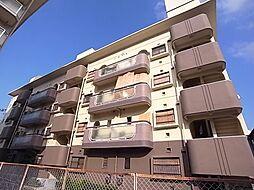 羽曳野ロイヤルハイツ[3階]の外観