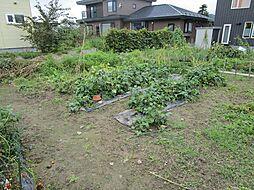 家庭菜園など畑...
