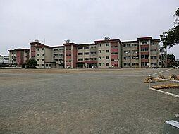 清水小学校 約...