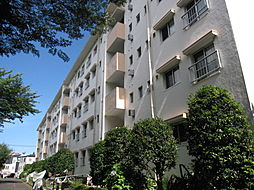 神奈川県川崎市多摩区三田3丁目の賃貸マンションの外観