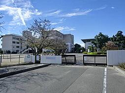 大徳小学校 徒歩 約6分(約450m)