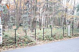 公園金山森の広...