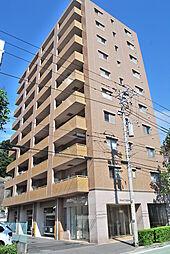 Amour Yokohama