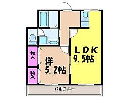 愛媛県松山市小坂5丁目の賃貸マンションの間取り