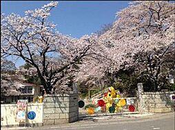 東平幼稚園 8...