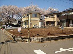 春には桜並木が...