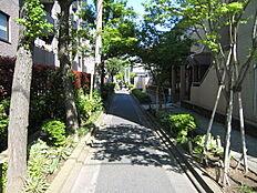 南側道路です。自転車、歩行者用道路のためとても静かです。緑が多く散歩にも最適です。