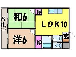 愛媛県松山市中央1丁目の賃貸マンションの間取り
