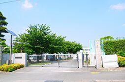 竹野小学校
