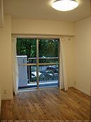 南西バルコニーに面したお部屋 植栽の緑が室内からも見えます