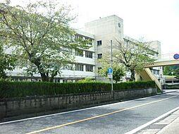 昭和小学校まで...
