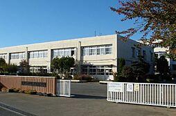 中学校深谷中学...