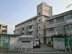 深井小学校(6...
