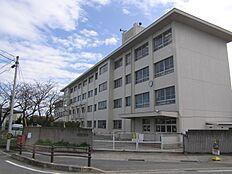 播磨小学校…約540m