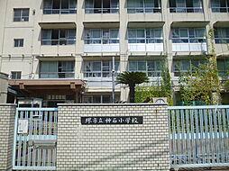 堺市立神石小学...