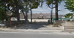 学区 錦小学校