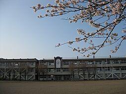 学区:寿小学校