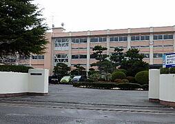 高校鳥取県立境...