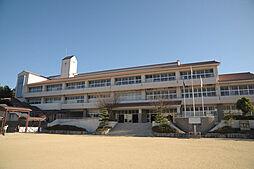 飯野小学校 3...