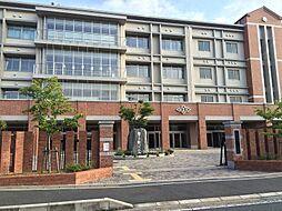 白糸中学校