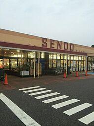 SENDO(せ...