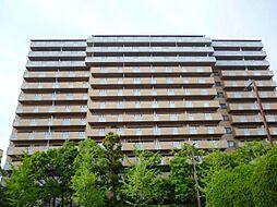シーサイドももちヴェルデコート6番館[12階]の外観