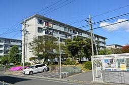 男山第二住宅111棟[3階]の外観
