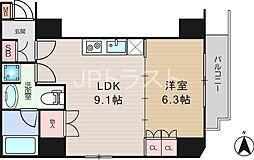 南堀江アパートメント グランデ[10階]の間取り