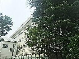 中学校本太中学...