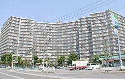 埼玉県深谷市上野台の賃貸マンションの外観