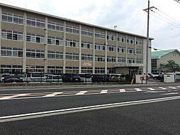 青葉中学校
