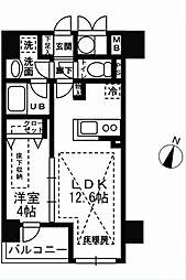 ルジェンテリベル日本橋濱町[803号室]の間取り