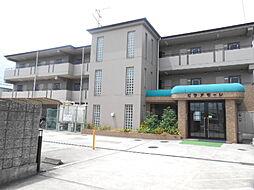 ビラアモーレ[3階]の外観